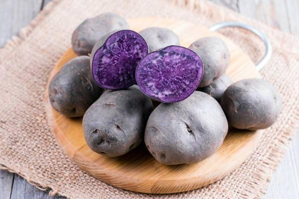 Фиолетовая картошка: описание сорта, полезные свойства, отзывы
