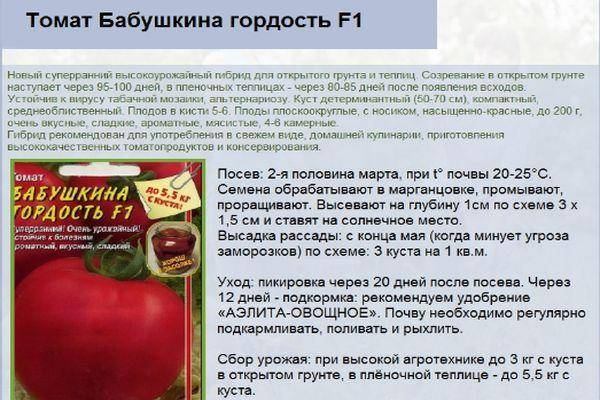 Описание сорта томата щедрость, особенности выращивания и урожайность