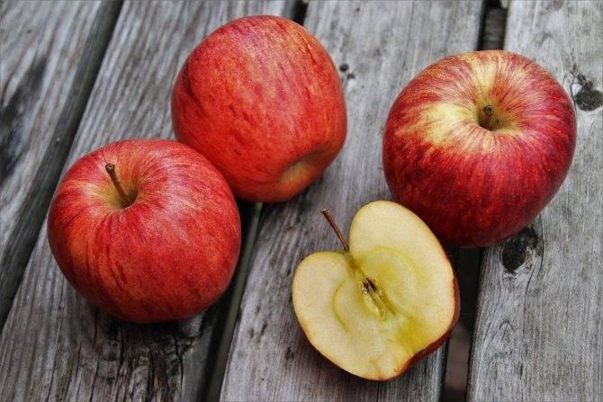 10 правил качественной заморозки ягод и фруктов