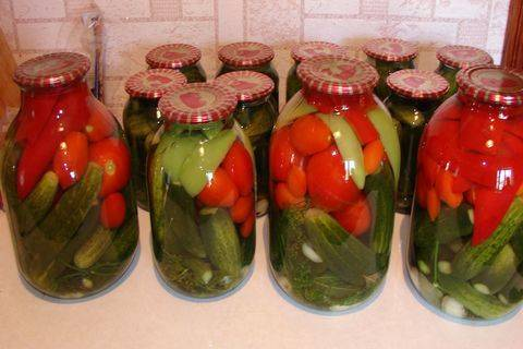 Лучшие рецепты приготовления огурцов с цветной капустой на зиму