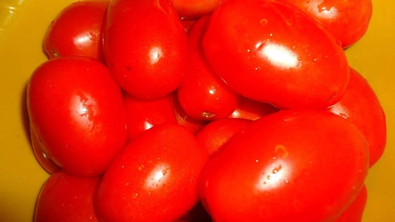 Обзор томата «огородник»: преимущества и недостатки, условия выращивания и характеристики готового урожая