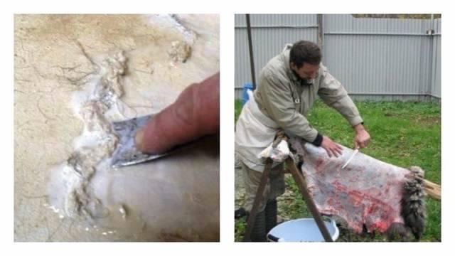 Топ-4 способа выделки овечьей шкуры в домашних условиях и инструкция