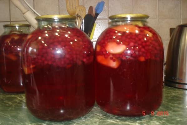 Топ 10 простых рецептов компота из красной черемухи на зиму, со стерилизацией и без