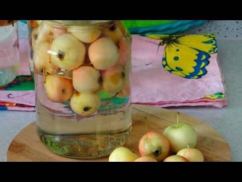 Куда использовать яблоки из компота. универсальные рецепты компотов из яблок на зиму. компот из яблок на зиму без стерилизации
