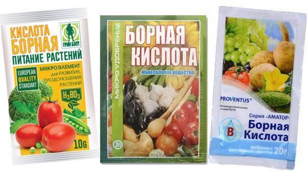 Подкормка огурцов борной кислотой – 8 особенностей и рекомендации по применению
