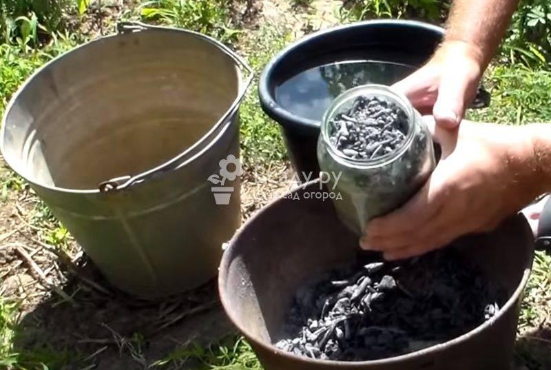 Подкормка огурцов золой: способы внесения, дозировки, рецепты удобрений