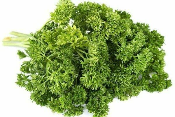 Что представляет собой петрушка мооскраузе 2, как ее выращивают и используют?