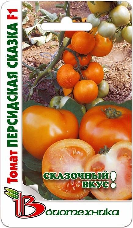 Самая полная характеристика томата «снежная сказка»: описание сорта и особенности выращивания