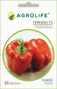 Описание сорта укропа геркулес, его характеристика и выращивание