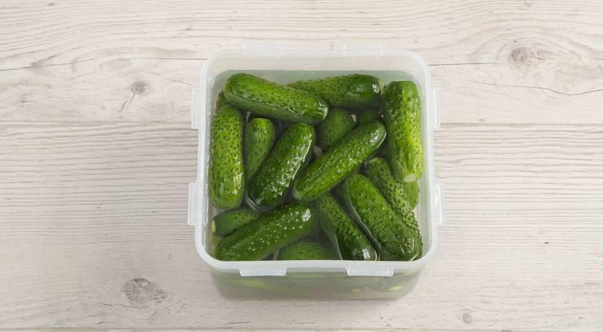 Малосольные огурцы с чесноком и зеленью быстрого приготовления: 9 классических рецептов хрустящих огурцов