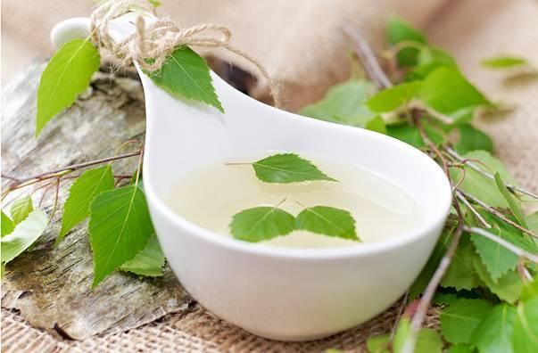 Березовый сок: простые и вкусные рецепты консервации