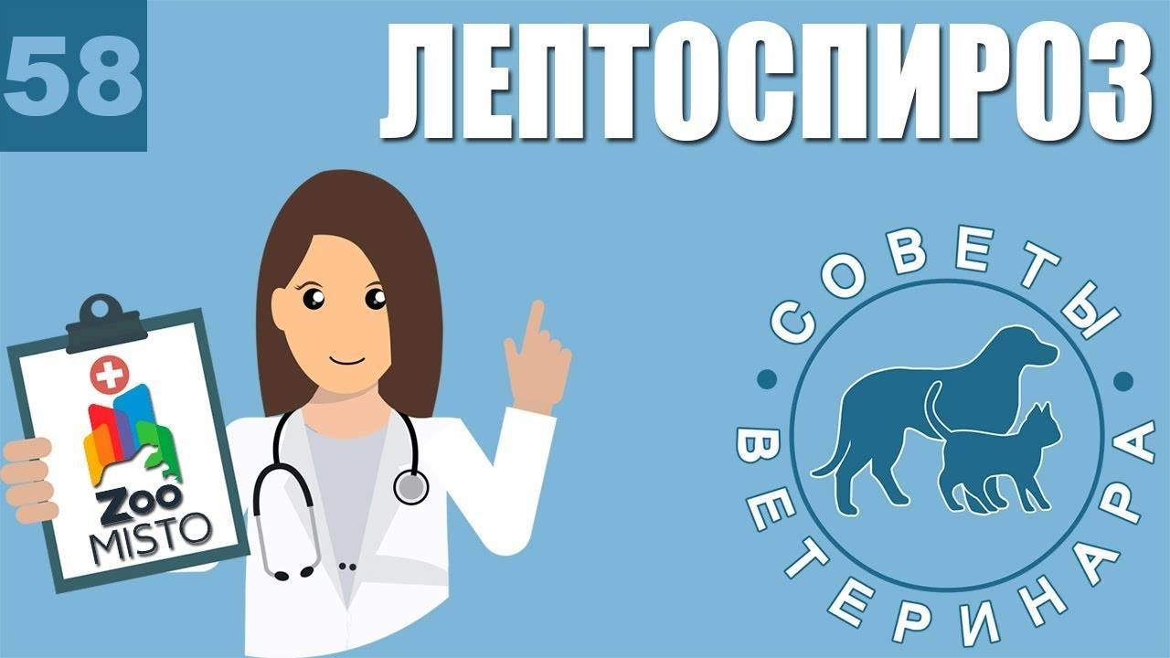Гост 33280-2015 средства лекарственные для ветеринарного применения. вакцины против лептоспироза животных. технические условия