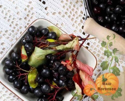Компот из черноплодки на зиму, рецепты
