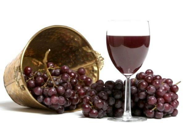 Как в домашних условиях сделать сухое вино
