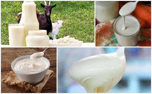 Йогурт из козьего молока в домашних условиях