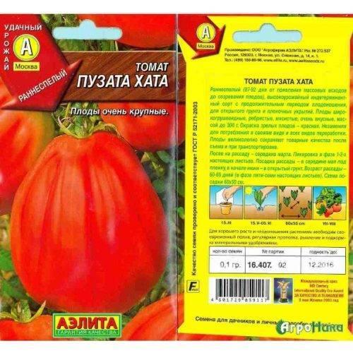 Сорт пузата хата – томат с необычными плодами