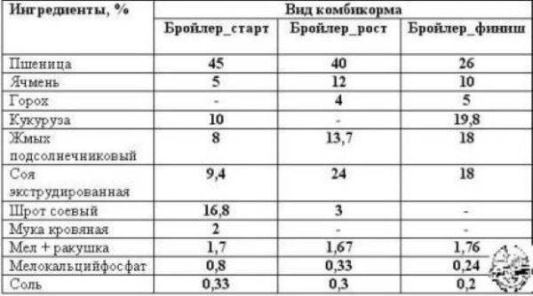 Вес бройлеров в разный период жизни: как определить, таблица набора веса по дням