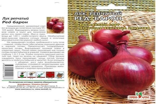 Лук ред барон: характеристики сорта и советы по выращиванию