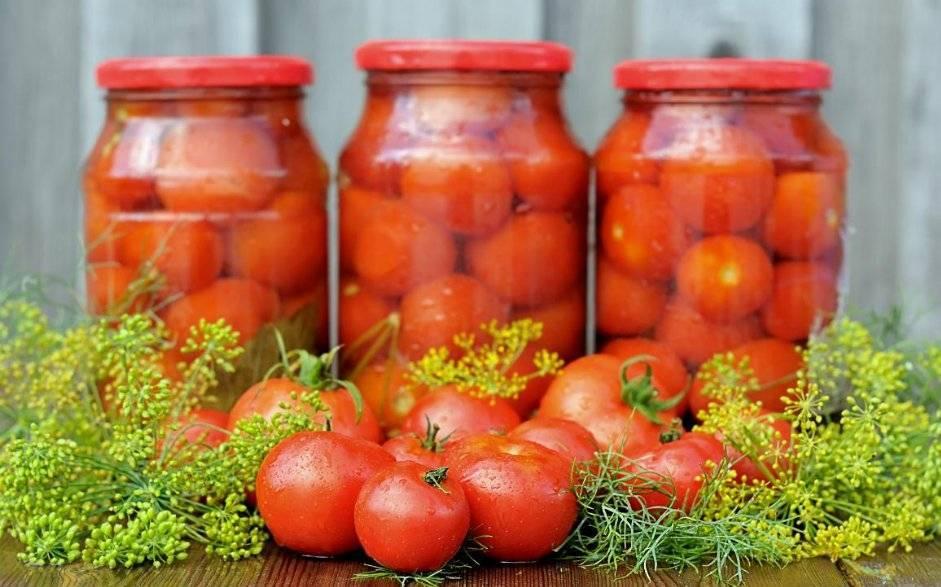 ТОП 2 рецепта маринования помидоров с черной и красной рябиной на зиму