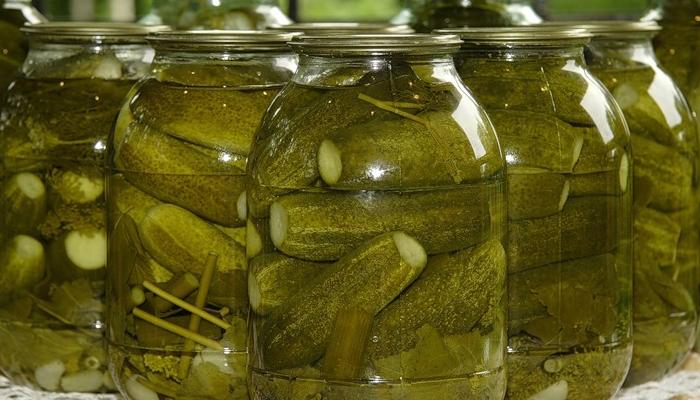 8 лучших рецептов квашеных огурцов на зиму: заготовки для всей семьи!