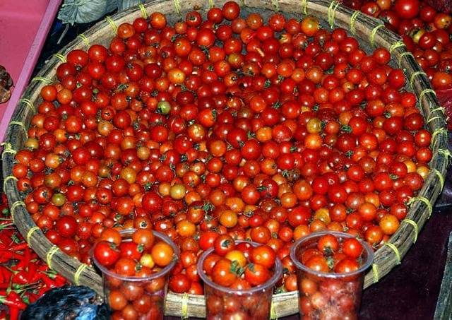 Сорта томатов: рапунцель