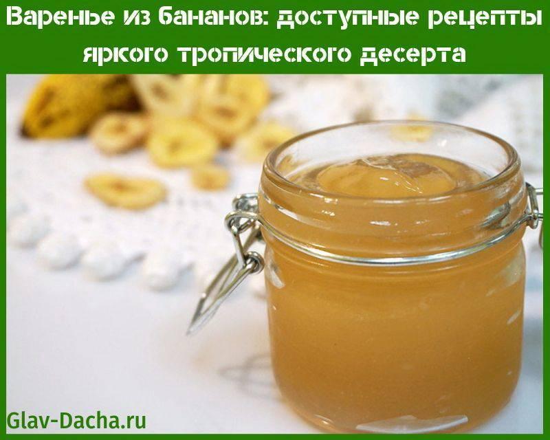 Кабачки с яблоками на зиму: 8 вкусных рецептов приготовления, хранение закруток