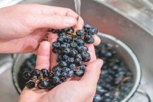 Почему у домашнего вина появляется запах браги