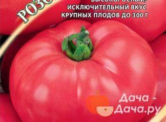 Характеристика и описание сорта томата сахарный гигант, его урожайность