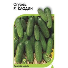 Описание сорта огурца клодин, его характеристики и выращивание