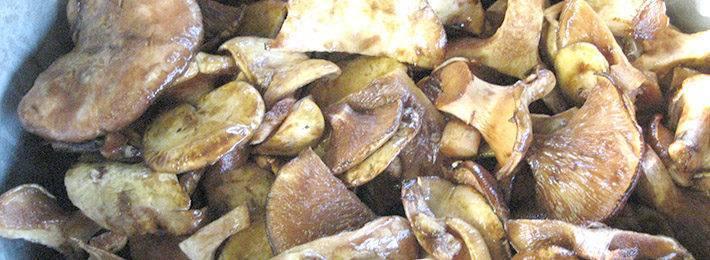 Маринованные подосиновики: рецепты. как мариновать подосиновики холодным способом