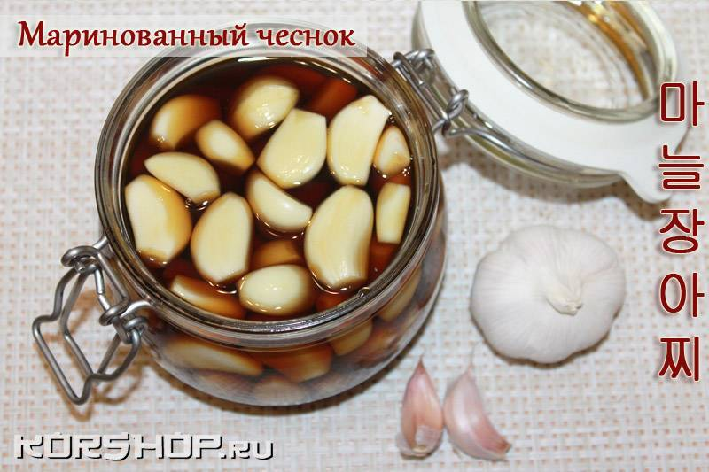 Черемша на зиму — рецепты заготовки дикого чеснока, чтобы сохранить витамины