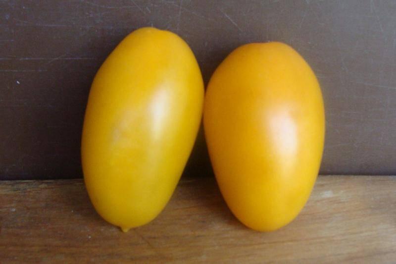 Буян— томат любимый, хоть и боком не румян