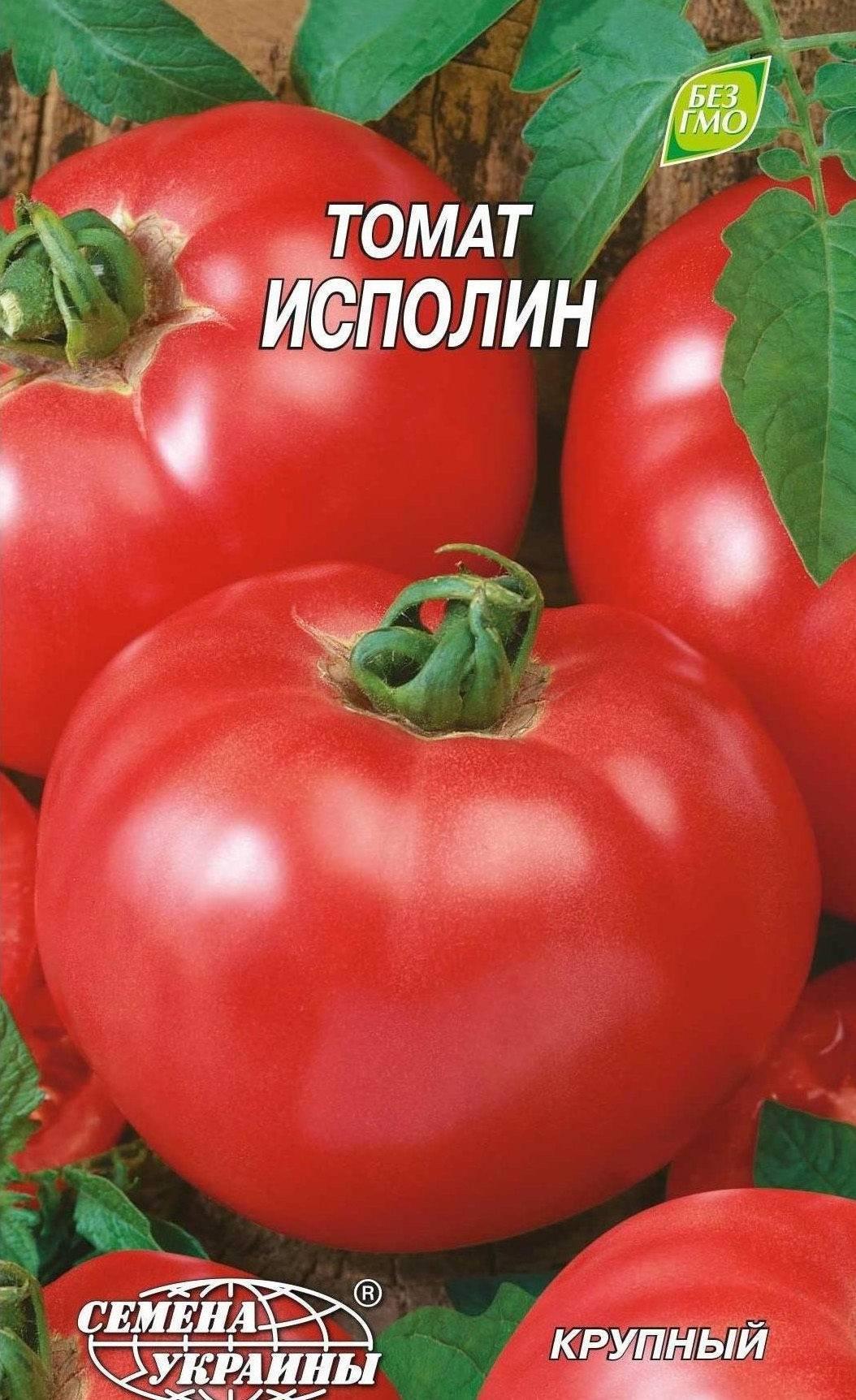 Томат «исполин малиновый» – отличный сорт крупноплодных помидоров
