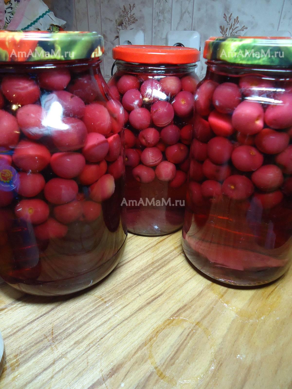 Компот из вишни на зиму в банках (8 рецептов)|willcomfort.ru