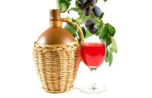 Рецепты вина, наливок и настоек из компота для самостоятельного приготовления дома
