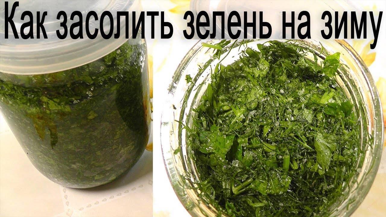 Рецепт зеленого соуса на зиму