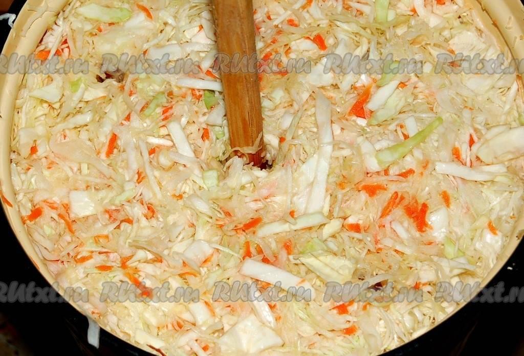 Квашеная капуста — готовим правильно в домашних условиях