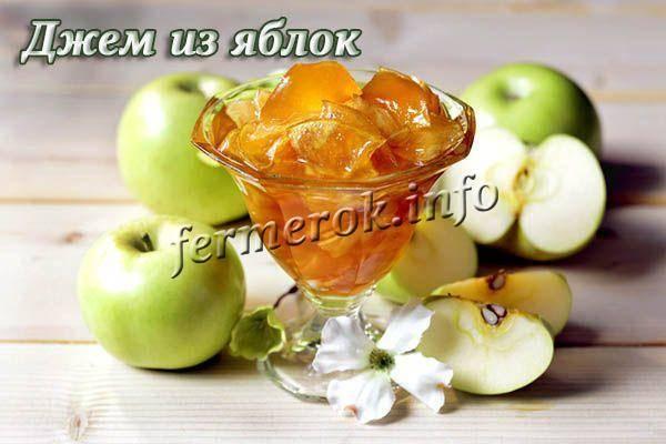 Пюре из яблок на зиму — 7 простых рецептов яблочного пюре