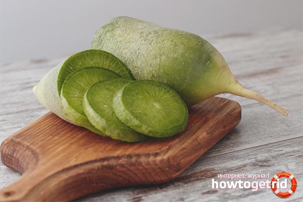Зеленая редька — полезные свойства, калорийность