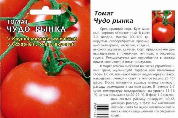 Характеристика и описание сорта томата Чудо сада