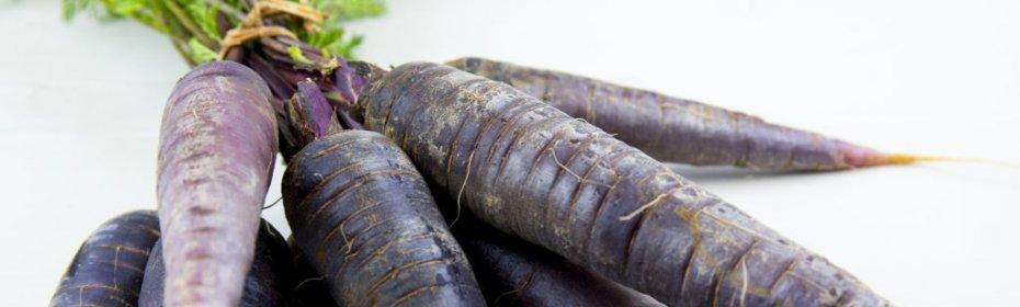 Черная морковь, польза и вред, применение в кулинарии