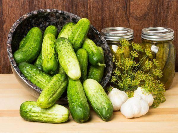 Самые вкусные консервированные огурцы на зиму — 10 лучших рецептов