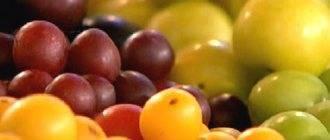 Маринованные сливы на зиму - 5 простых рецептов с фото пошагово