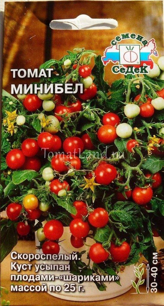 Характеристика и описание сорта томата Минибел, его урожайность