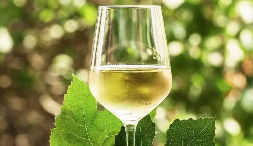3 простых рецепта приготовления вина из виноградных листьев в домашних условиях