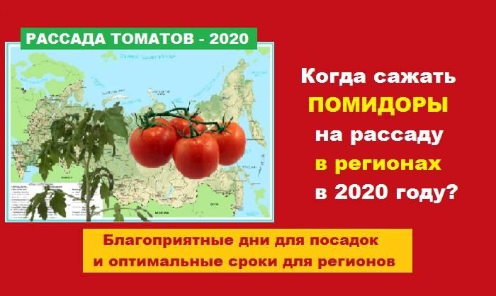 Посев томатов на рассаду в 2020 году в сибири по лунному календарю?