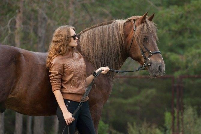 Как проходят роды лошади?