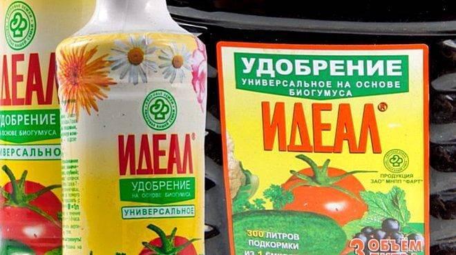 Подкормка для огурцов — «гумат калия». использование удобрения в садоводстве
