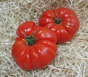 Томат марманде: характеристика и описание сорта, урожайность и отзывы с фото