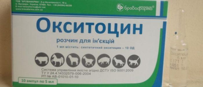 Седимин — как использовать комплексный витаминный препарат для животных